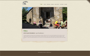 Alex_Furer_Websites_Screenshots_www.spiritdance-drumming.ch_01